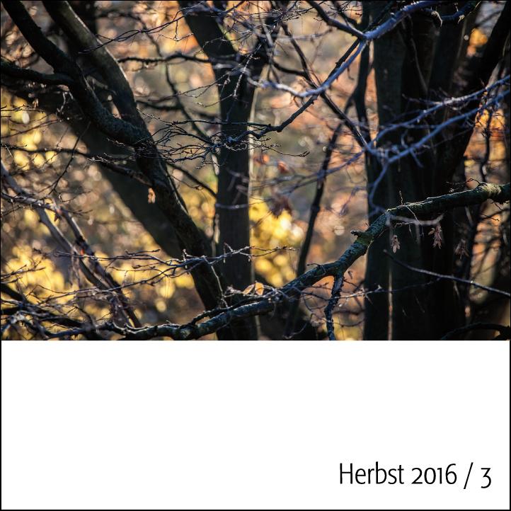herbst-2016-3-quadrat