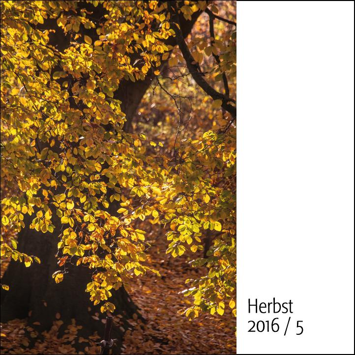 herbst-5-quadrat-h